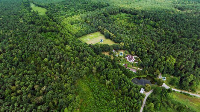 Wirtualny spacer po lesie i włościach Zamoyskich